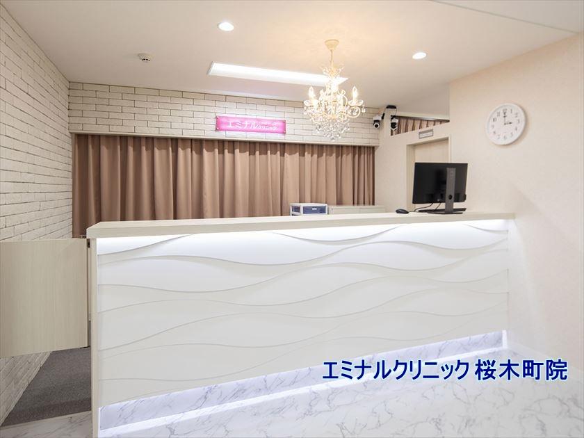 エミナルクリニック 桜木町院 の詳細情報や施術プラン・料金